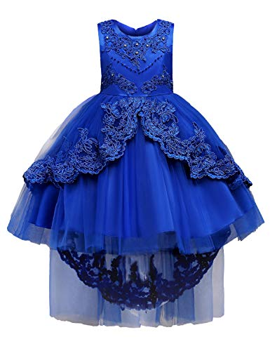 JOYMOM Tutu Dress, Baby Blue Beading Floral Fluffy Embroidered Flower Girl Gown with Bling Flowing Tie Back Zipper Closure Light Layers Empire Waist Lined Formal Ceremony Midi Dresses 110 ()