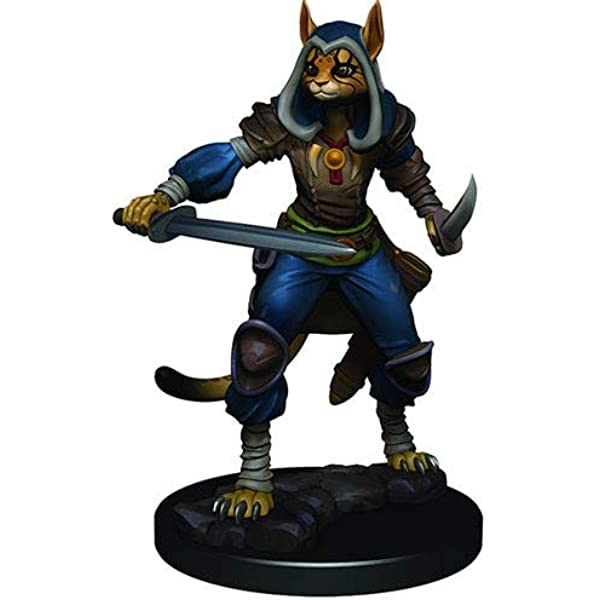 Amazon Com Nolzurs D D Icons Of The Realms Premium Painted Miniatures Female Tabaxi Rogue Toys Games X'd this is my tabaxi druid hecate and her best friend now turned tabaxi/former emotional support jaguar luna. amazon com nolzurs d d icons of the