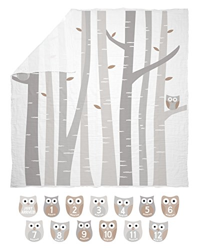 Pearhead Monthly Milestone Photo Blanket and Month Stickers Baby Keepsake Set, Woodlands Nursery Or Rustic Décor, A Perfect Photo Props Gift for a New Mom, Gray and White, Owl (Owl Nursery Pictures)