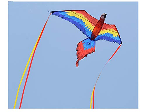 New 188cm Super 3D Parrot Kite Stereo Parrot Kite Easy to Fly Outdoor Fun Sport Toys For Children and Adults Gift Good Quality (red kite) by AMCYT