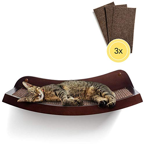 HumaneGoods is the best Cat Shelf? Our review at cattime.com uncovers all pros and cons.