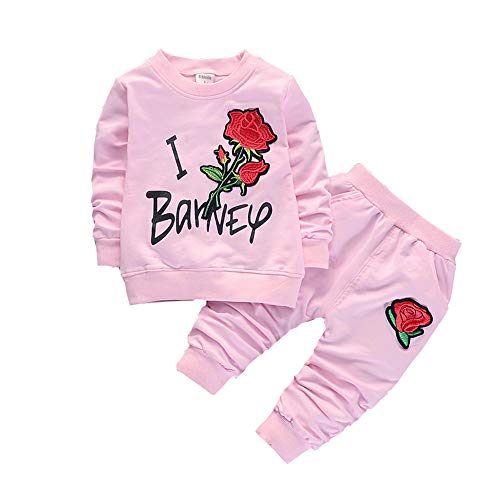 Spring Autumn Girls Clothing Set Children Tracksuit Clothes Baby Girls Floral Sweatshirt+Pants Sports Suit (Pink, 24M)