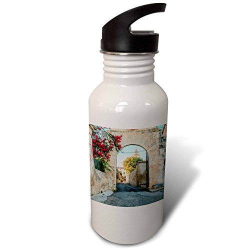 3dRose Danita Delimont - Architecture - Spain, Balearic Islands, Mallorca, church gateway. - Flip Straw 21oz Water Bottle (wb_277909_2) by 3dRose