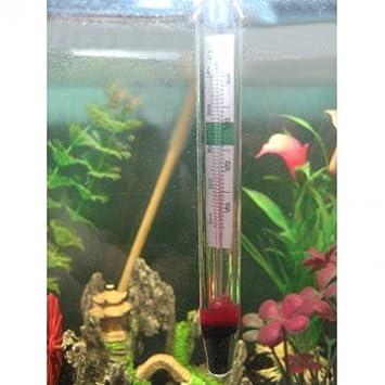 crawler termómetro acuario termómetro cilindro pecera cuadro de tortuga: Amazon.es: Productos para mascotas