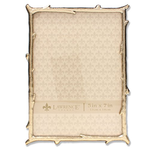 Lawrence Frames 5 x 7 Gold Metal Picture Frame with Natural Branch Design (Pictures Natural Gold)