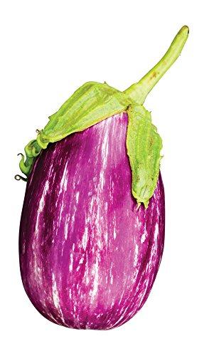 - Burpee Shooting Stars Eggplant Seeds 30 seeds