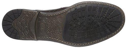 Geox U JAYLON C - Zapato brogue de cuero hombre marrón - Braun (C6006DK BROWN)