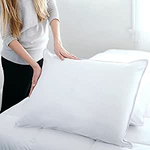 Sealy Posturepedic Hypoallergenic Soft Down Pillow, 20-Inch-by-26-Inch