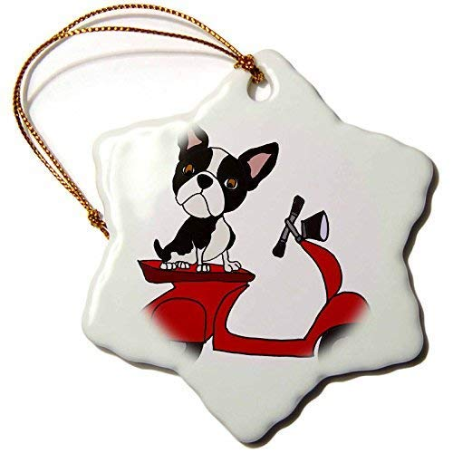 - Delia32Agnes Funny Cute Boston Terrier Dog Riding Red Motor Scooter Art Ceramic Christmas Ornaments for Home Christmas Tree Decoration Keepsake