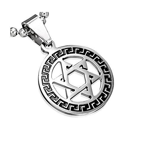 My Daily Styles Stainless Steel Silver-Tone Greek Key Jewish Star David Charm Pendant Necklace, 24