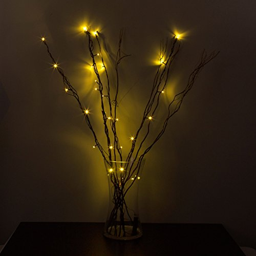 Lighting Strings Battery Powered 30 Inches 20 Led Lights Branch Lights For Christmas Home Decoration Warm White Durable Service Outdoor Lighting 2 Pack Led Lighted Twig Branches