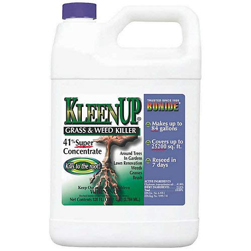Kleenup 41 Percent Concentrate Herbicide 1 Gallon