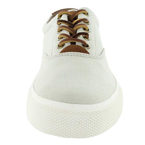 Polo by Ralph Lauren Men's Vaughn Canvas Lace-Up Fashion Sneaker Stone 9.5 M US