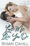 Love Me Like You Do (Winter Lake Book 1)