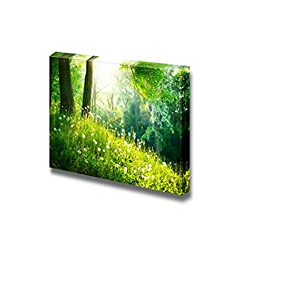 Astonishing Visual, Spring Nature Beautiful Landscape with Green Grass and Trees Wall Decor, Premium Creation