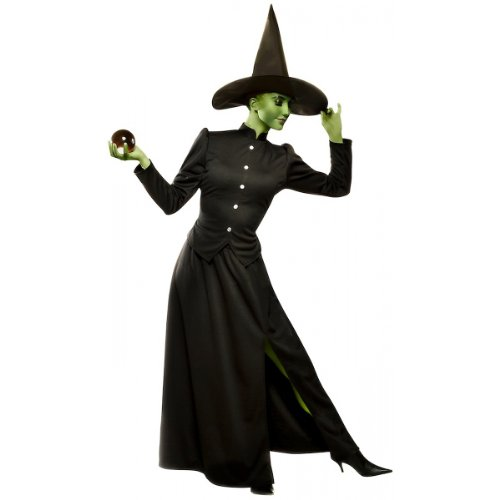 Wizard Of Oz Witch Costumes (Classic Witch Costume - Medium - Dress Size)