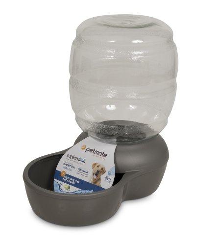 Petmate Replendish Gravity Waterer W Microban Buy