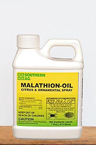 Root 98 Warehouse Southern Ag Malathion-Oil Citrus & Ornamental Spray (Parafine, Mineral Oil, Citrus, Avocados, Ornamentals), 16 OZ by Root 98 Warehouse
