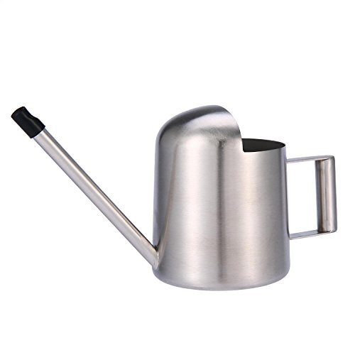 Small Watering Can, Aolvo Modern Mini Indoor Watering Can Stainless Steel 300ml 11OZ with Long Necked for House and Office Plants - Silver ()