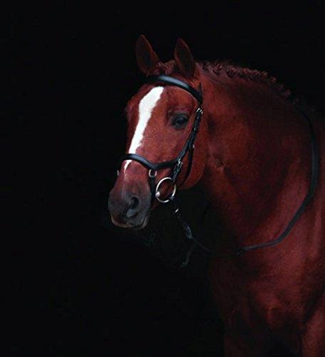 Horseware Rambo Micklem Deluxe Competition Bridle Trense Farbe und Größe wählbar (schwarz, Standard Horse)