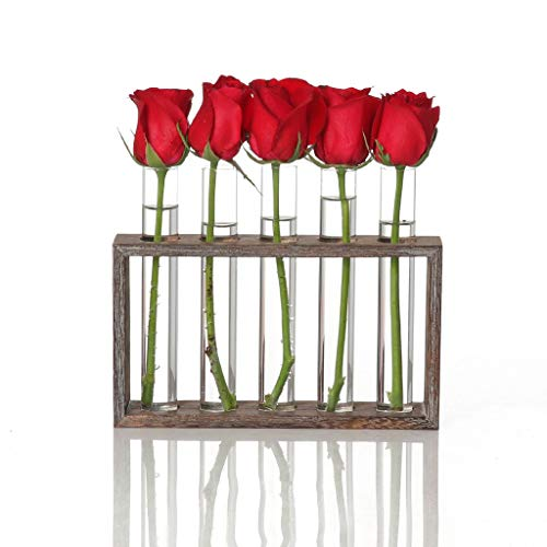 Test Tube Rack Planter, Transparent Hydroponic Flower Clear Vase with Wood Stand Frame Perfect for Coffee Shop Home Office Wall Decoration (B) (Test Tube Rack Metal)
