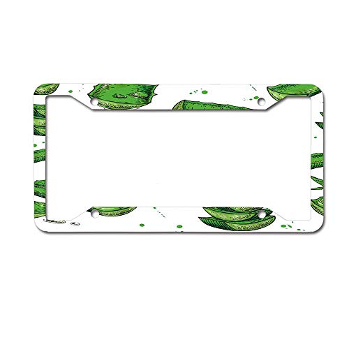 (keyishangmaoLu Tropical Plants Decor Aloe Leaves Decor License Plate Frame Aluminum License Plate Frame Car Tag Cover 4 Holes and Screws)