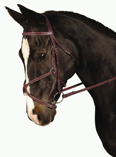 Kincade Padded Figure 8 Full Bridle, Brown