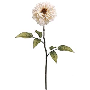 "28"" Silk Zinnia Flower Spray -Beige (Pack of 12) 56"