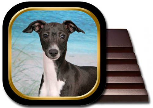 Italian Greyhound Coaster Set ()