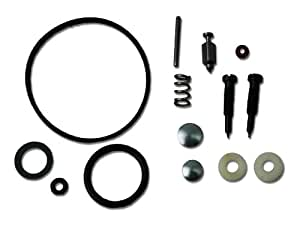 Briggs & Stratton 494349 Carburetor Overhaul Kit