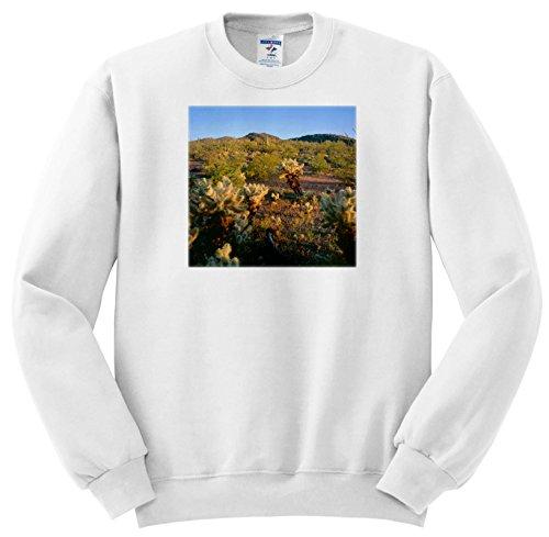 Danita Delimont - Deserts - USA, Arizona, Sunrise Light On nearby Teddy Bear Cholla Cacti. - Sweatshirts - Adult Sweatshirt 4XL (SS_258698_7) Teddy Bear Adult Sweatshirt