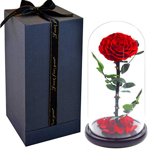 Smequeen Handmade Preserved Rose Never Withered Roses Flower in Glass Dome, Gift for Valentine's Day Anniversary Birthday ()