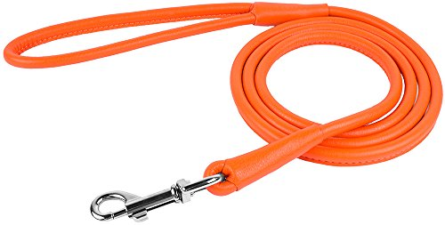 Pictures of CollarDirect Rolled Leather Dog Leash 4ft Soft 4