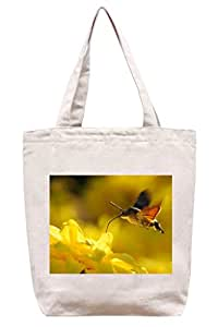 Hummingbird Hawk Moth – algodón Canvas Tote Bag