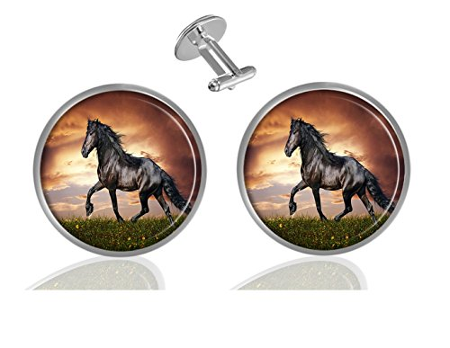 (LCTCKP Brown Horse Custom Personality Men's 2PCS Fashion Dazzling Shirt Cuff links Initial Silver Round Cufflinks)
