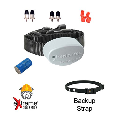 Perimeter Technologies Invisible Fence R21 Replacement Collar 7K - 1 Dog and Free Backup Collar Strap by Extreme Dog Fence
