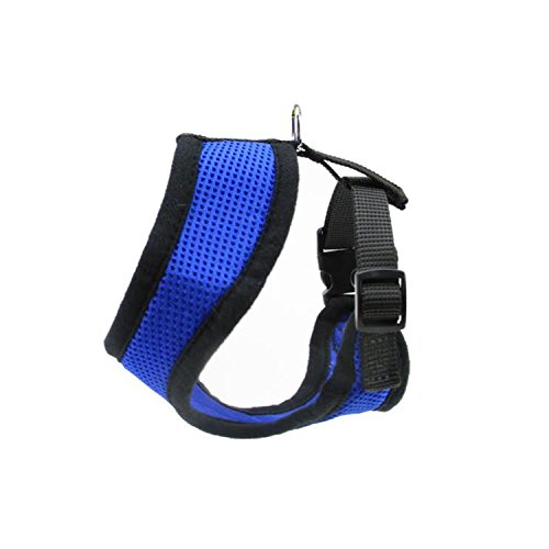 blue-and-black-breathable-nylon-adjustable-dog-harness-small