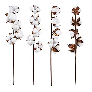 Cotton Stems - Artificial Cotton Flowers, Farmhouse Style Display Vase Filler, Rustic Decorations for Home, Office 91