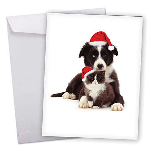 J6596GXSG Jumbo Merry Christmas Greeting Card: Copy Cats, Featuring an Adorable Border Collie and Tuxedo Kitten in Matching Santa's Hats for Christmas With Envelope (Giant Size: 8.5