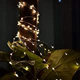 Nufelans 5M 50LED String Lights Indoor Firefly Lamp Fairy Light Home Decorative for Wedding Party Home Garden (Warm White)