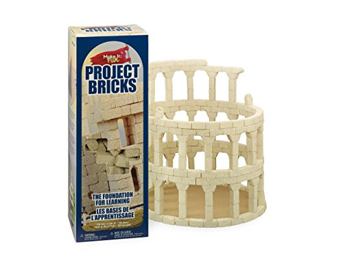 FloraCraft Styrofoam Kit 285 Piece Project Bricks 0.6 Inch x 0.6 Inch x 1.4 Inch Tan ()