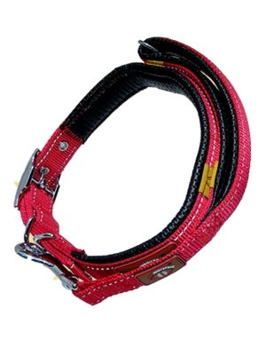 The Original Magnetic Collead Its a Collar and a Lead Red Black (Red, Medium 14''-18'')