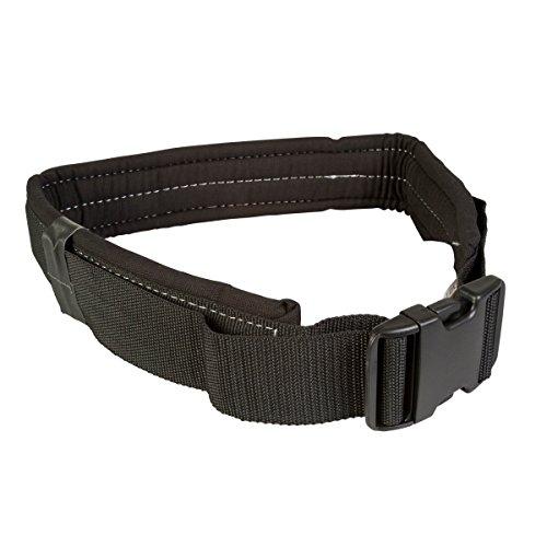 Buy belt or orbital sander