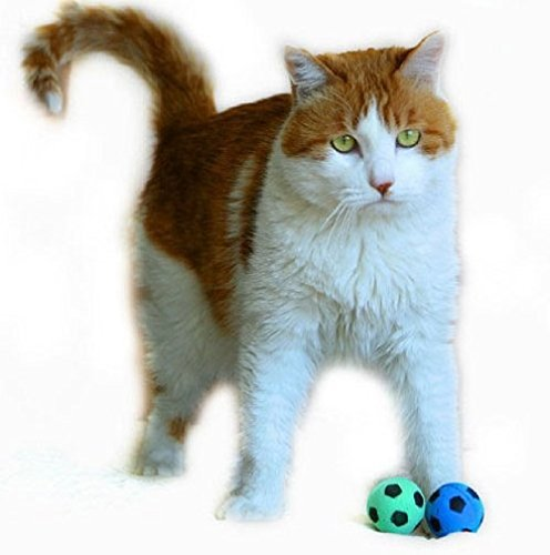 Most Popular Toys Ever : Petfavorites™ foam sponge soccer ball cat toy best