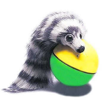 Game/Play Electronic Pets - Weazel Ball Playful Weasel Kid/Child by Toys-n-Games