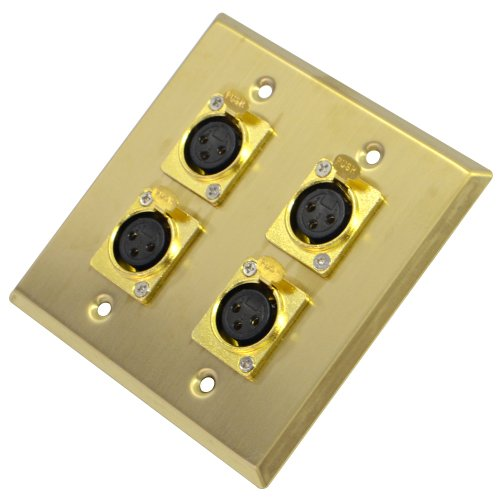 (Seismic Audio SA-PLATE19 Gold Stainless Steel 2 Gang XLR Female Wall Plate with 4 XLR Female Connectors)