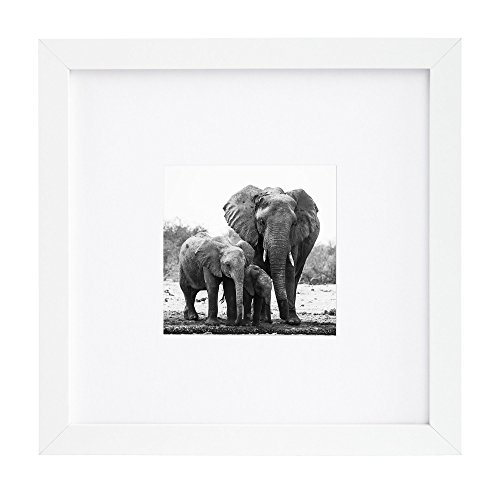 8x8 White Picture Frame - Matted to Fit Pictures 4x4 Inches