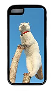 iPhone 5C Case, Personalized Protective Rubber Soft TPU Black Edge Case for iphone 5C - Climbing Cat Cover