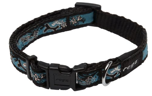 Rogz Fancy Dress Small 3/8-Inch Jellybean Dog Collar, Turquoise Chrome Design, My Pet Supplies
