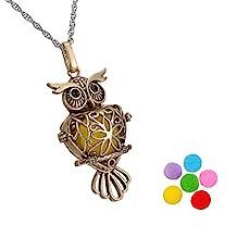 HooAMI Owl Aromatherapy Essential Oil Diffuser Necklace Locket Pendant Gift Set,Antique Bronze